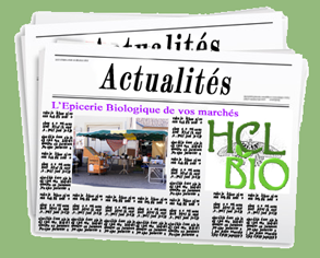 actuality-s-newsletter-293x236.png